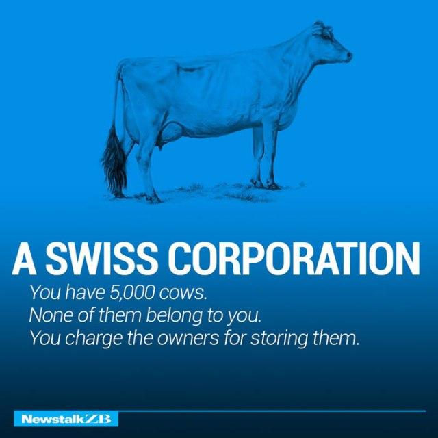 cow13
