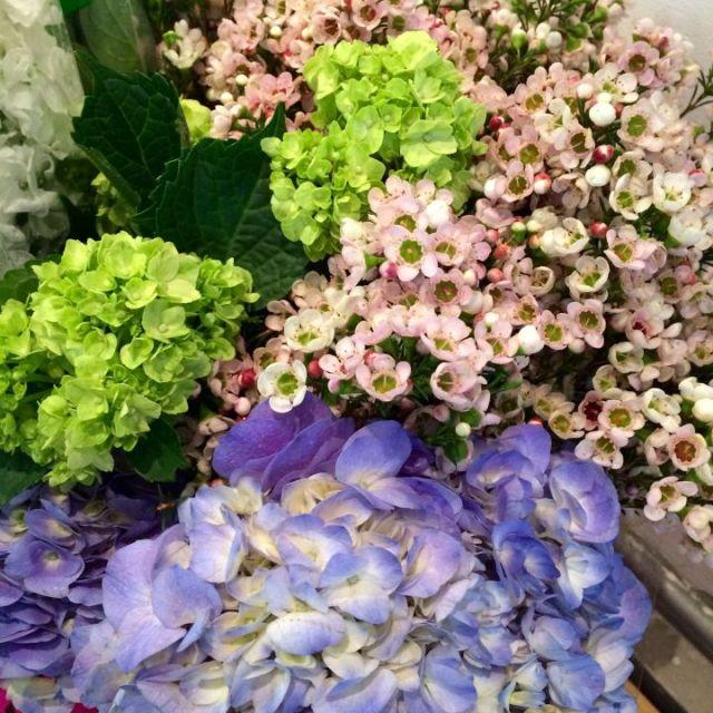 keira flowers