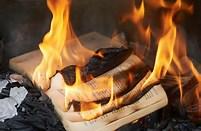 burningbooks