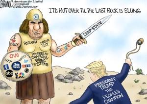 trump vs goliath