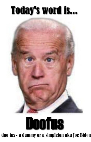 Joe Biden doofus